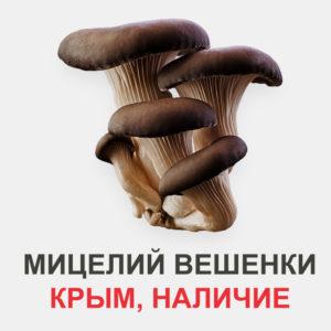купить мицелий вешенки в Крыму
